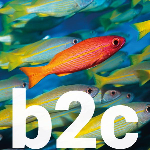 b2c say what fish icon
