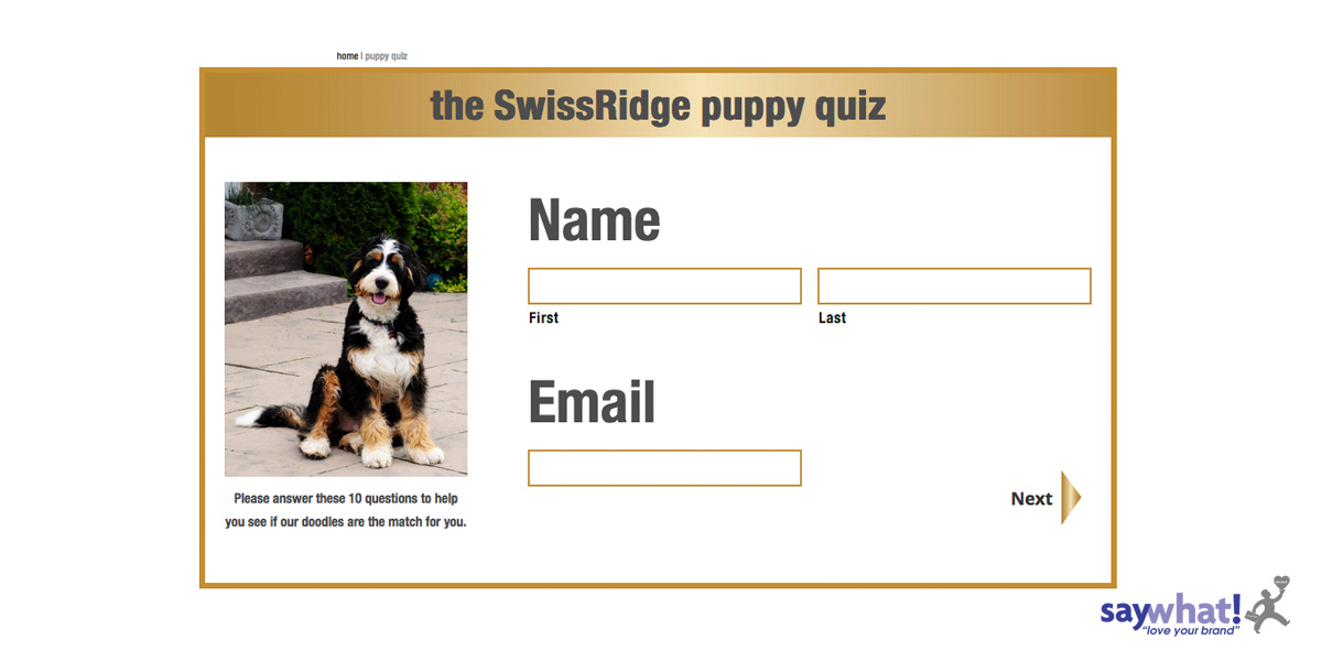 swissridge-login-1200x600