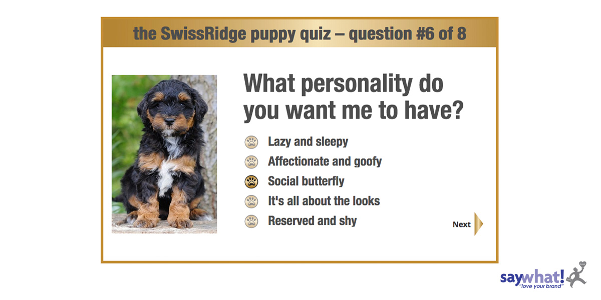 swissridge-quiz-screen